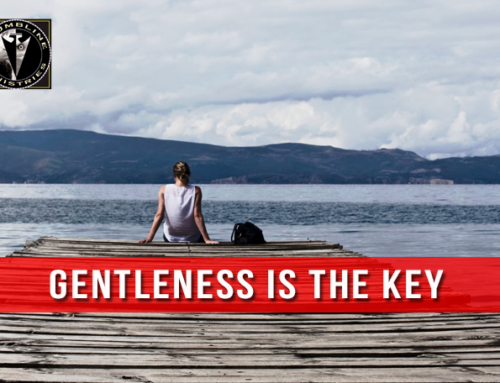Gentleness Is The Key